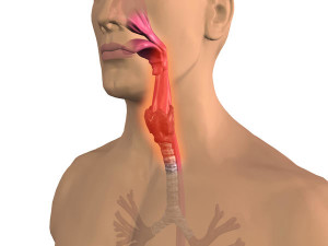 Throat Inflammation2